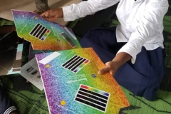 Using NASA spectrographs to study the light of our Sun
